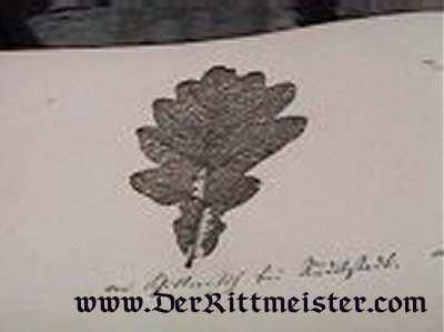 ALBUM BELONGING TO MANFRED VON RICHTHOFEN'S GREAT AUNT - Imperial German Military Antiques Sale